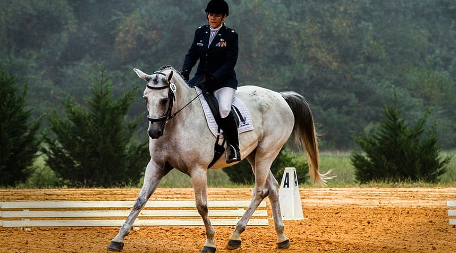 Самые экстремальные виды спорта ТОП-10 верховая езда