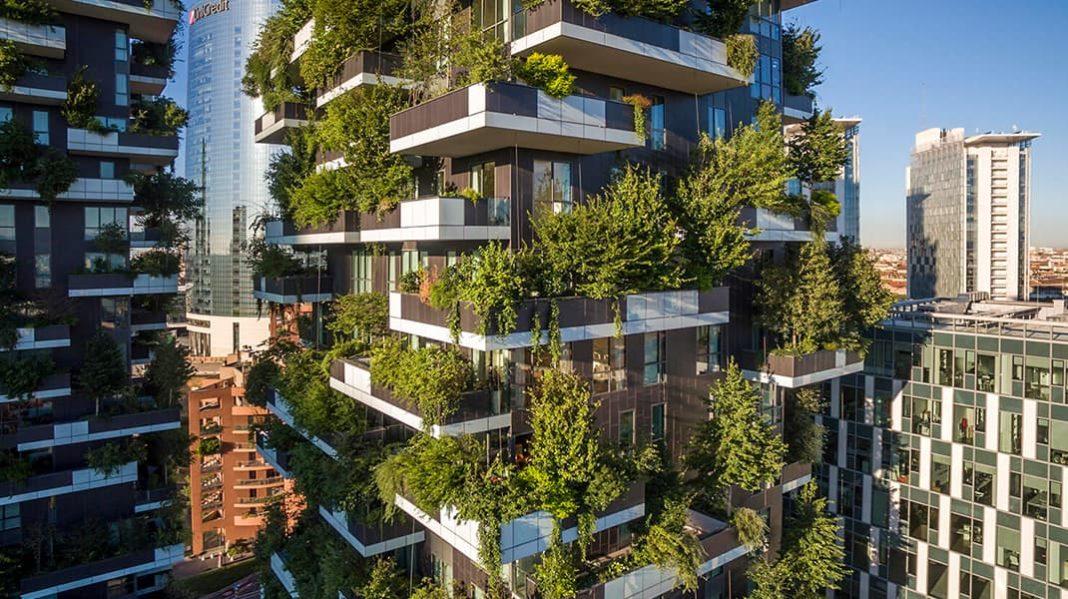Экологические проблемы. Как вертикальный лес может спасти планету