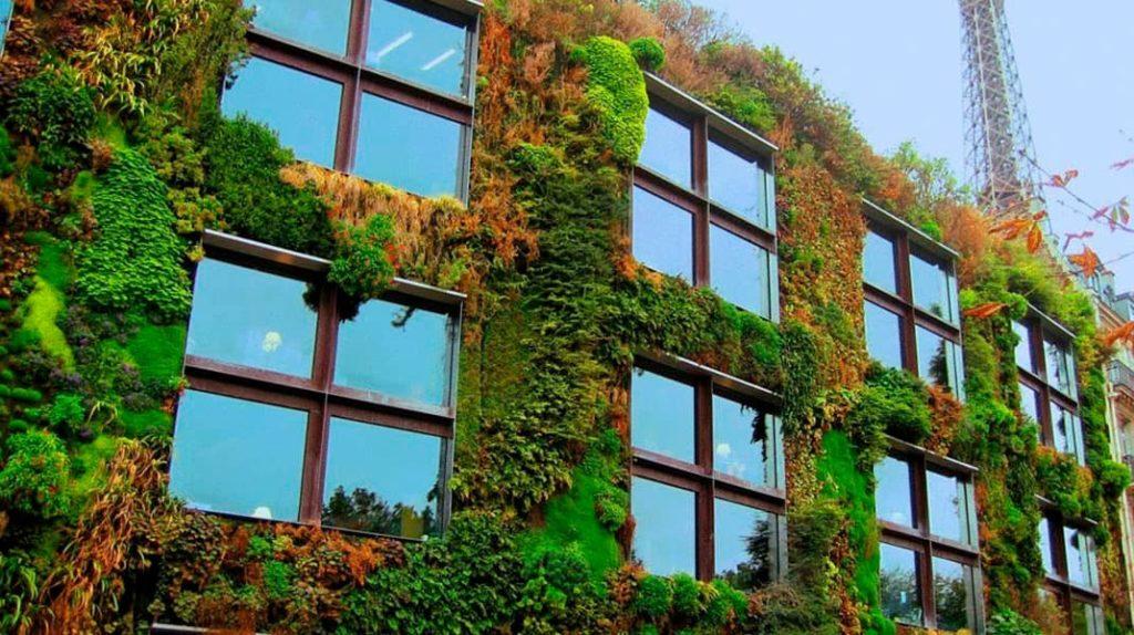 Вертикальное озеленение, вертикальный лес, Патрик Бланк, вертикальный сад