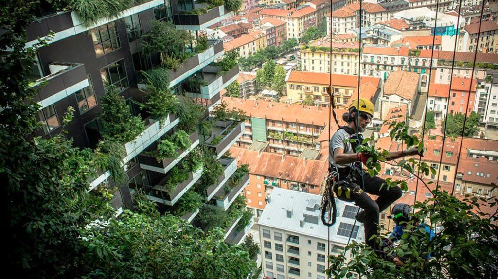 Вертикальный лес в Милане, озеленение, Bosco Verticale, Стефано Боэри