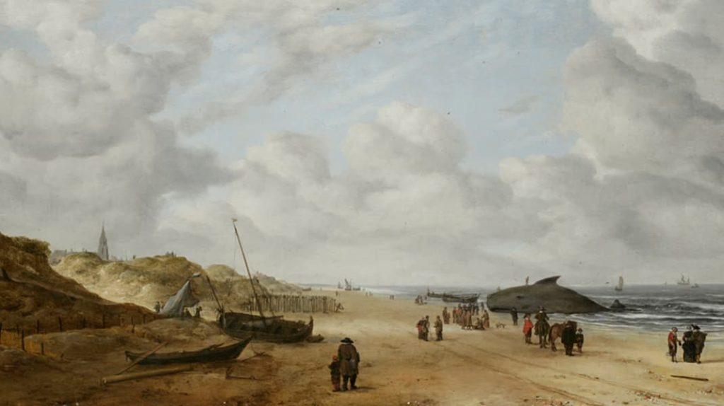 Хендрик ван Антониссен Сцена на берегу с китом Известные картины
